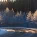 Карельские дороги.  .  . а ночью в метель - это нечто!  Ещё те американские горки при почти нулевой видимости. На этом фото  обычный поворотик...так себе. . .