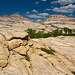 Как среди этих скал смогли затесаться целые кленовые рощицы - для меня лично загадка. Хотя воды в многочисленных лунках и расщелинах тут достаточно.