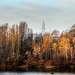 Golden riverside