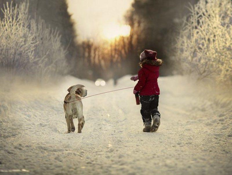 последняя зимняя историяphoto preview
