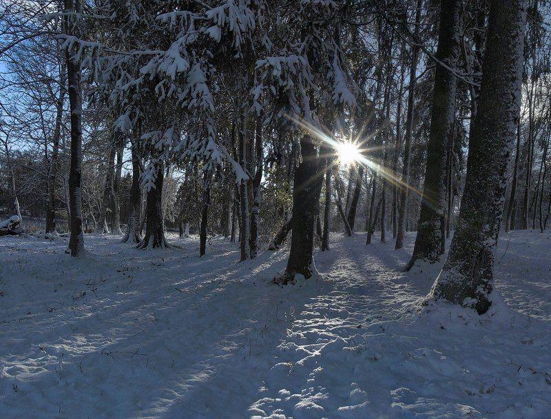 закат, контровой свет, ранняя весна, март ~67~photo preview