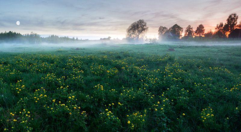 весна, деревня, пейзаж, поле, туман, панорама Май туманно-цветастыйphoto preview