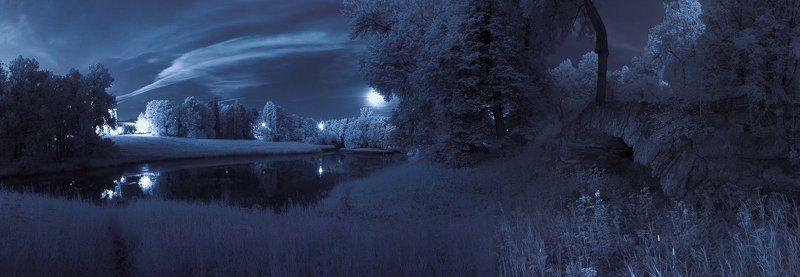 infrared, длинная выдержка, ночь, парк, полнолуние ~77~photo preview