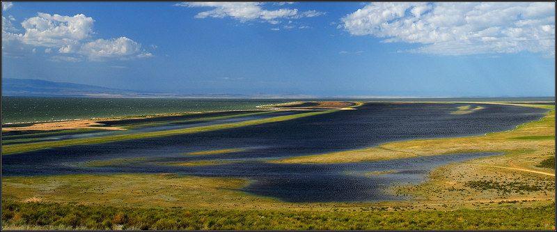 Побережье озера Зайсанphoto preview