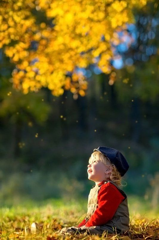 Осени дождик золотойphoto preview