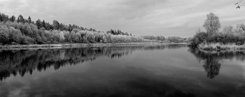 Разная осеньphoto preview
