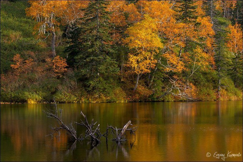 Гора шпамберг, Озеро моховое, Сахалин Осень на горных озерах у горы Шпамбергphoto preview