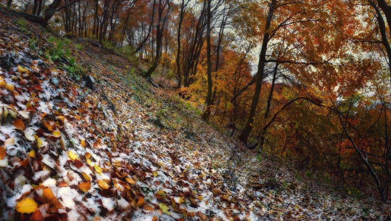 Осень vs Зимаphoto preview