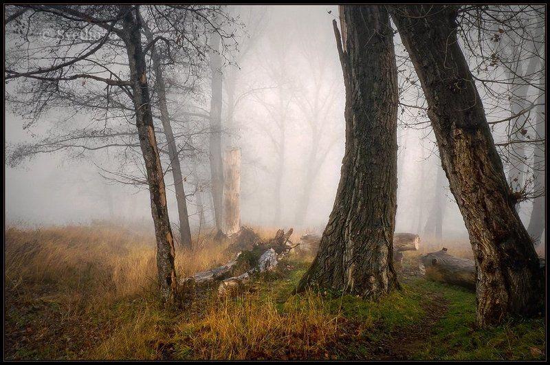 bulgaria, sofia photo preview