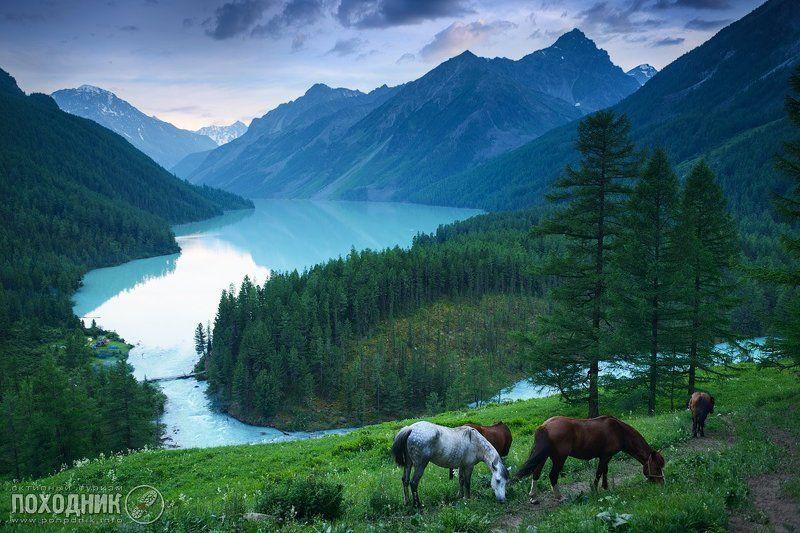 Вечер на Кучерлинском озере. Горный Алтай.photo preview