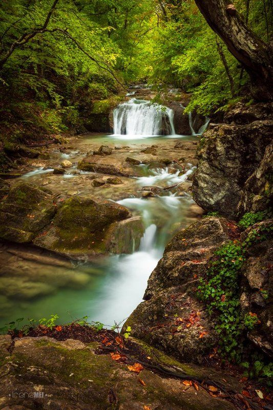 Осенние рекиphoto preview