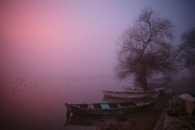 Рассвет на озереphoto preview