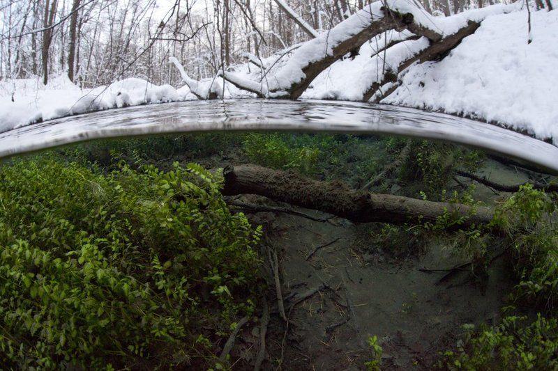 сплит,подводная фотография Зимний сплитphoto preview