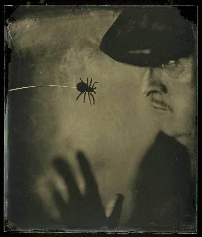 Сказки Черной вдовыphoto preview