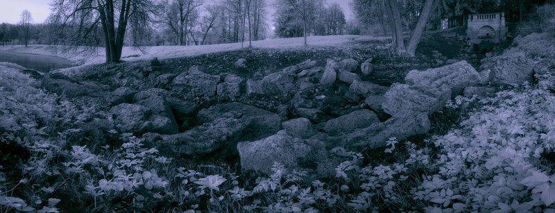 Infrared, Long exposure, Дерево, Деревья, Длинная выдержка, Инфракрасная съемка, Красота, Лес, Лето, Луна, Мистический, Небо, Необычный, Парк, Полнолуние, Рассвет, Цвет ~122~photo preview