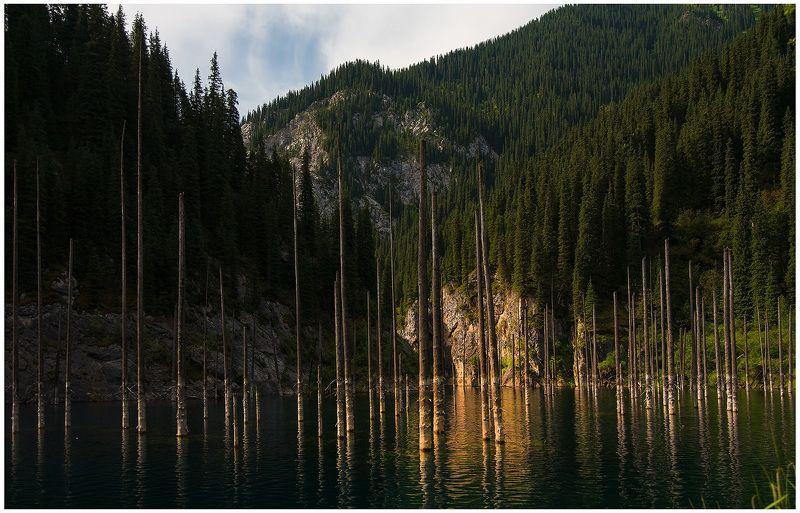 Озеро Каинды. Казахстан.photo preview