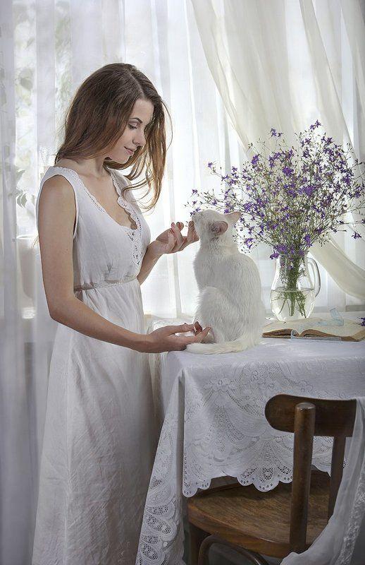 Белое утро с белым котомphoto preview