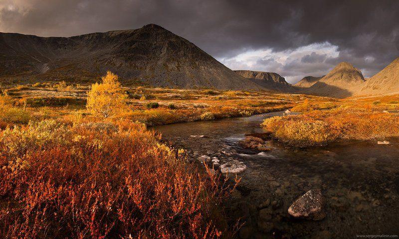 Autumn, Golden, Khibiny, Mountains, Горы, Кольский, Осень, Хибины В золотые минуты осени...photo preview