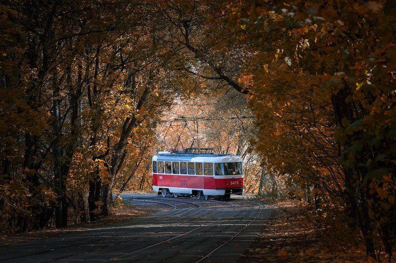 Мосгортранс, московский трамвай, осень, трамвай Московский трамвай. Осень.photo preview