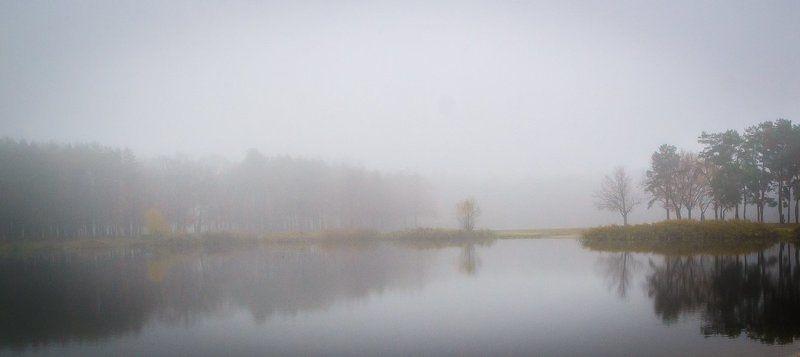 Лес, Озеро, Осень, Парк, Туман, Утро Туманные зарисовкиphoto preview