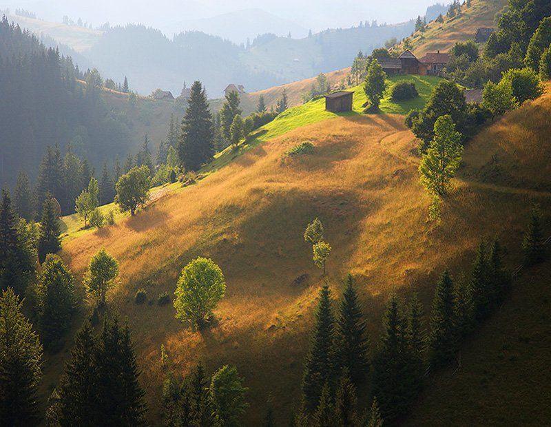 Карпаты, Осень, Цибух Тарас ***photo preview