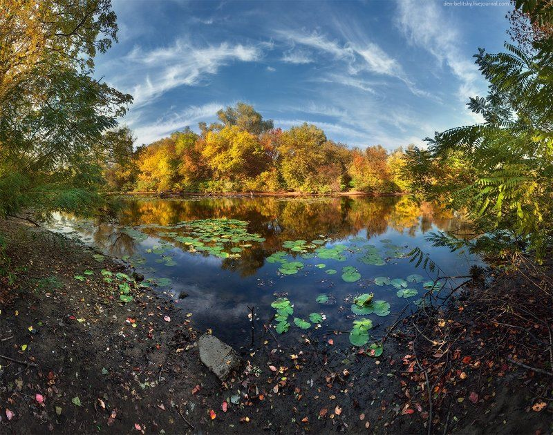 Лес, Облака, Озеро, Осень, Пейзаж, Украина Остров Хортицаphoto preview