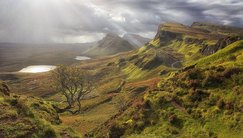 mc, scotland пятьсот семьдесят три оттенка зеленого..photo preview