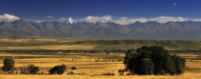 Горы, Киргизия Горы Киргизииphoto preview
