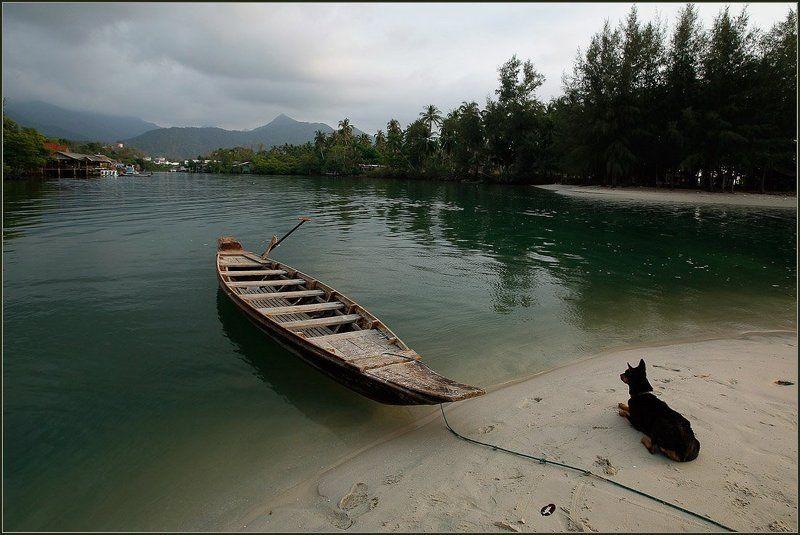 таиланд, ко, чанг, собака, залив, лодка, ожидание, причал, море, песок Ожиданиеphoto preview