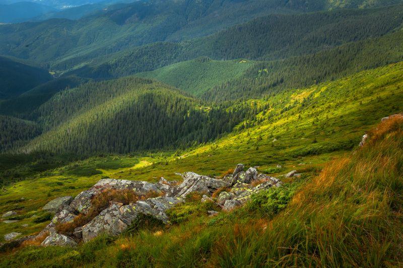 Carpathians, Landscape, Mountains, Nature, Горы, Карпаты, Пейзаж, Природа Карпатские историиphoto preview