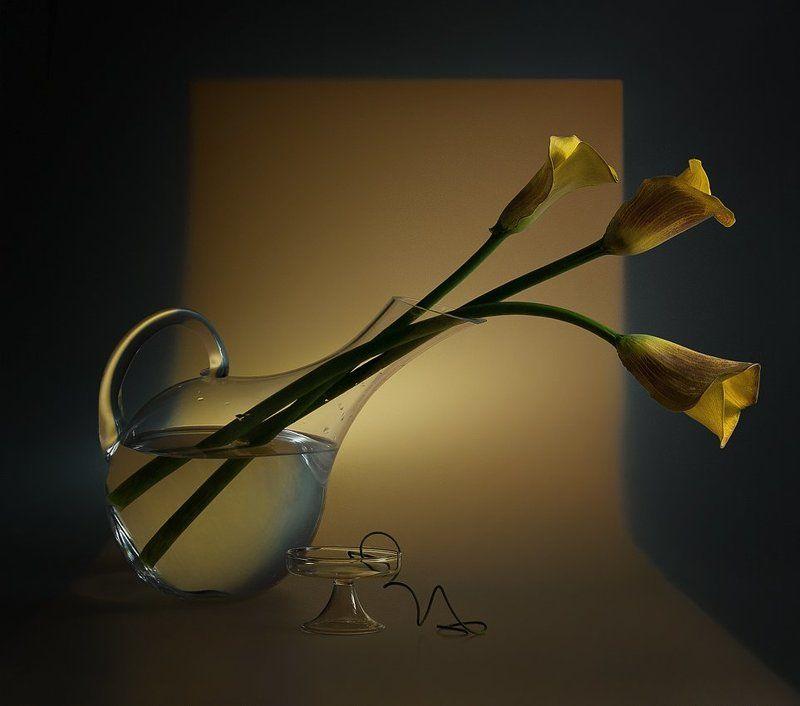 Желтые калыphoto preview