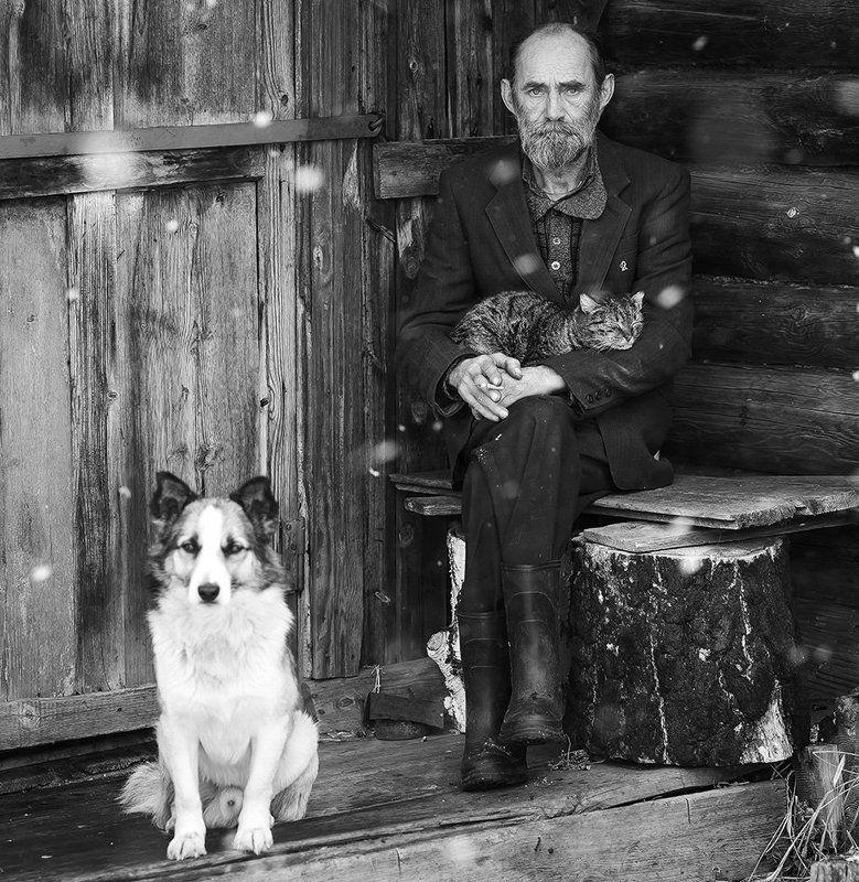 Строгий портрет с котом и собакойphoto preview