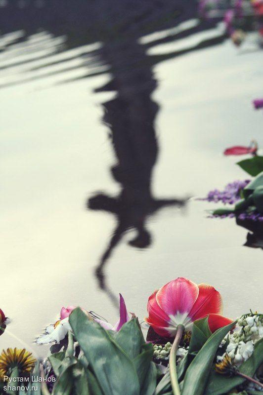 Родина-Мать, Волгоград, Рустам, Шанов, 9 мая Родина-Мать зовет!photo preview