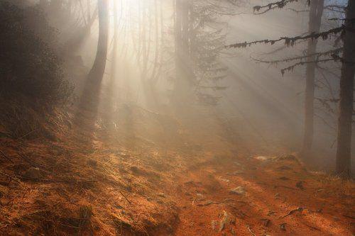На Монблане в Тумане