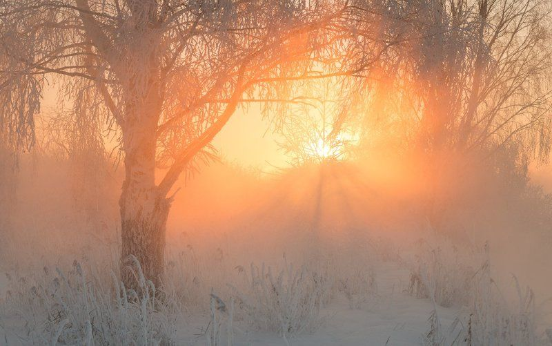 Про зимние рассветыphoto preview