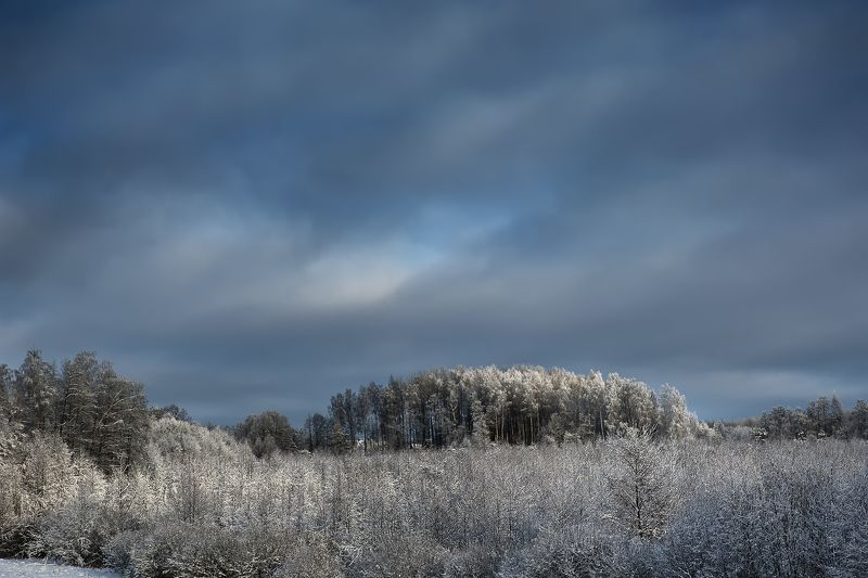 Зимние этюдыphoto preview