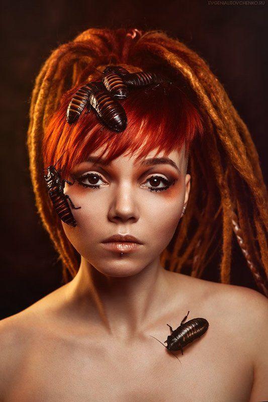 Африка, Бритый, Глаза, Девушка, Дреды, Карие, Мадагаскарские, Насекомые, Портрет, Рыжий, Тараканы Африканские мотивыphoto preview