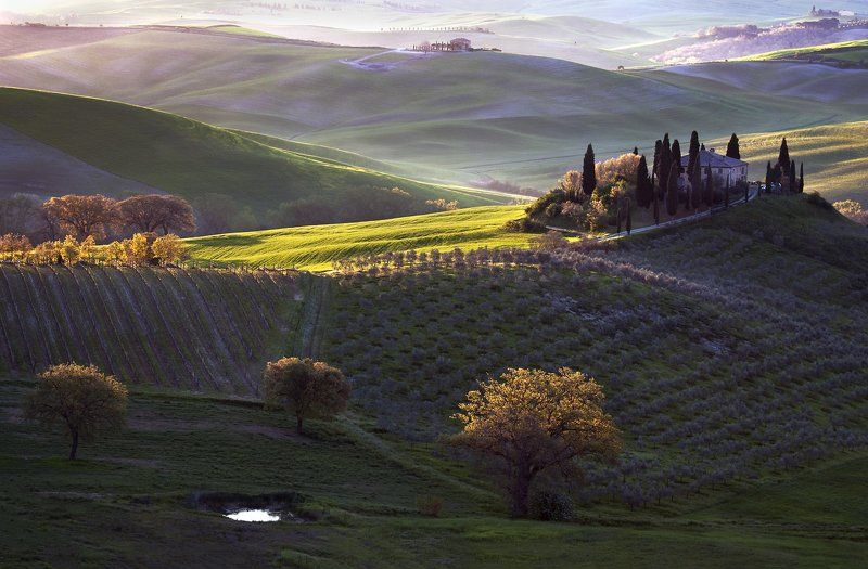 Tuscan Morningphoto preview