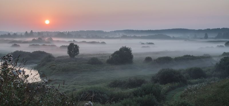 Тригорское. Пушкинские горы В царственном покоеphoto preview