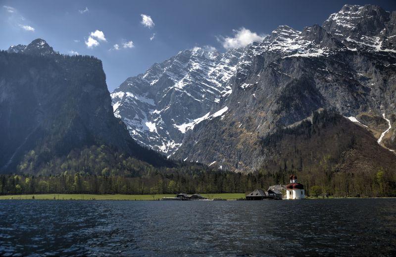 Альпийская веснаphoto preview