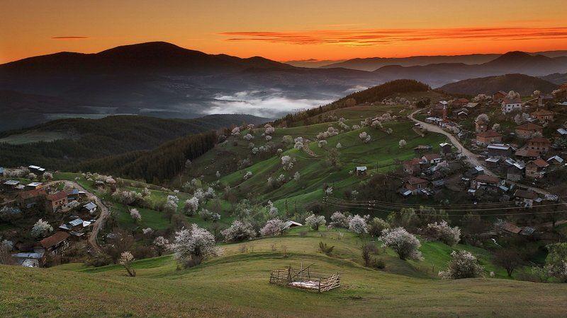българия, весна, гора, деревья, рассвет, родопи Просыпается деревнюphoto preview