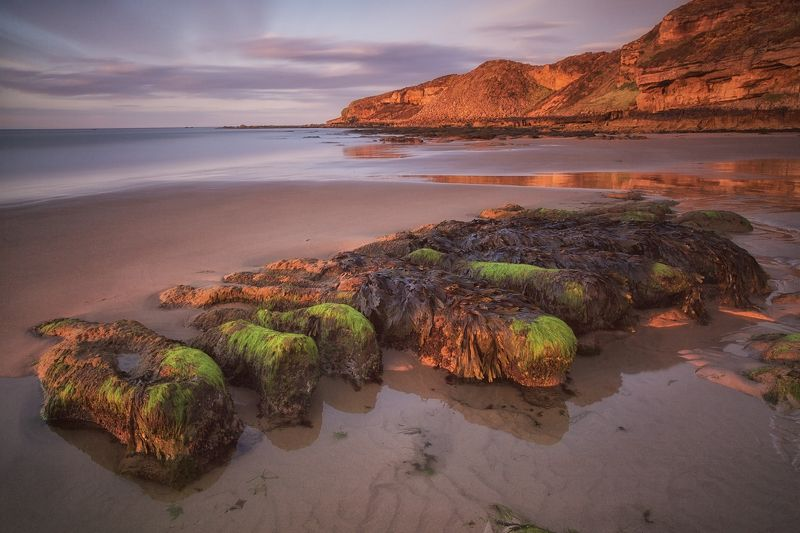 шотландия, scotland, moray, mc Морские ленивцыphoto preview