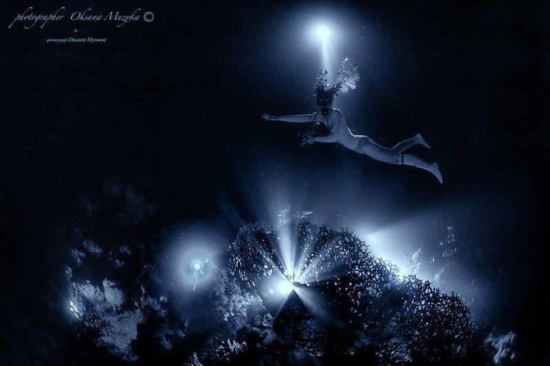 ночь, фонарь, коралл, Маргарита, море, вода Маргаритаphoto preview