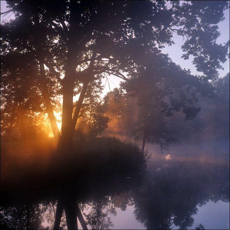 Утренняя рассветная слайдовая картинка с солнцем сквозь туман над прудом в Середниковоphoto preview