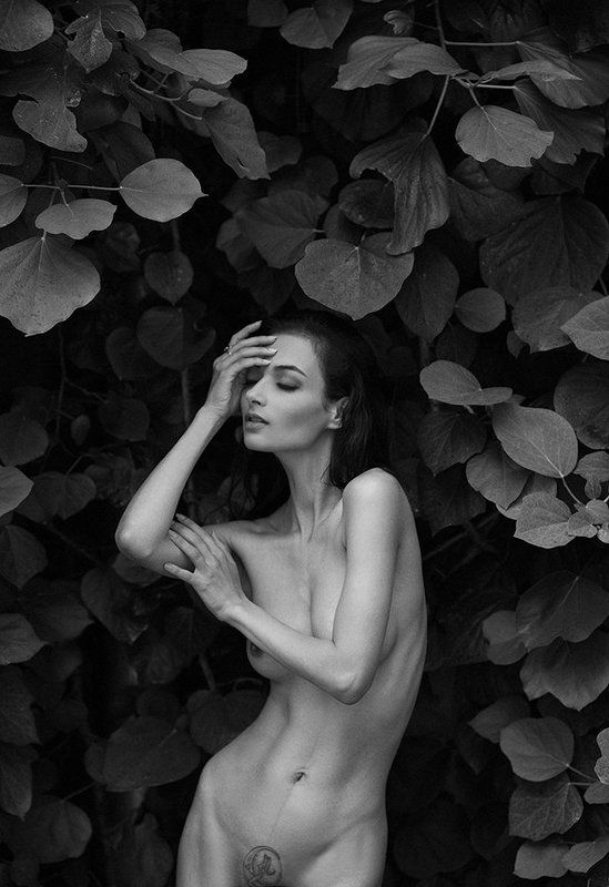 photo, girl, portrait, blackandwhite, nude, art Наяphoto preview
