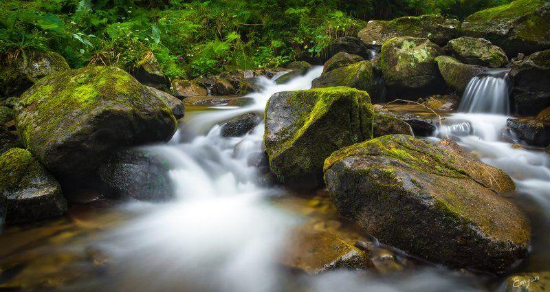 landscape, nature, carpathians, ukraine, stones, moss Среди ручьёвphoto preview