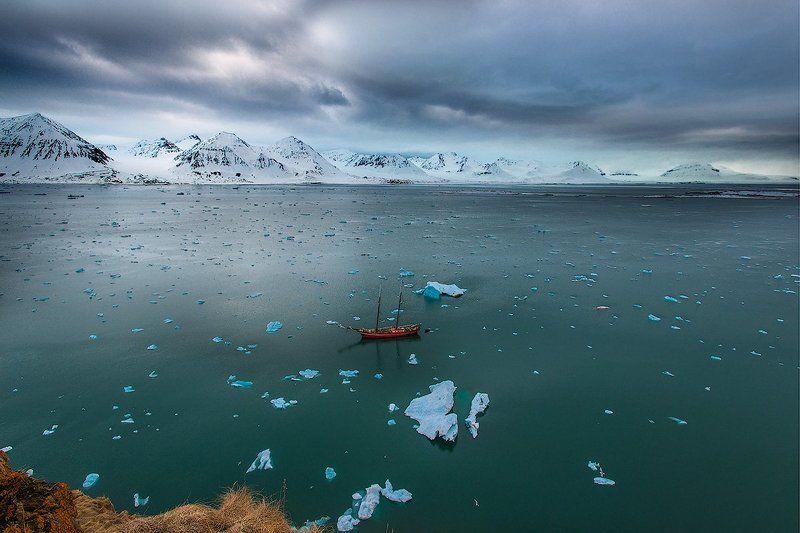 Суровое обаяние Арктикиphoto preview