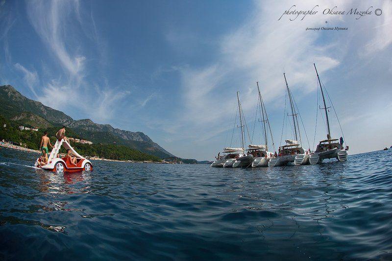 Море регата, Черногория катамаран Черногория. Регатаphoto preview