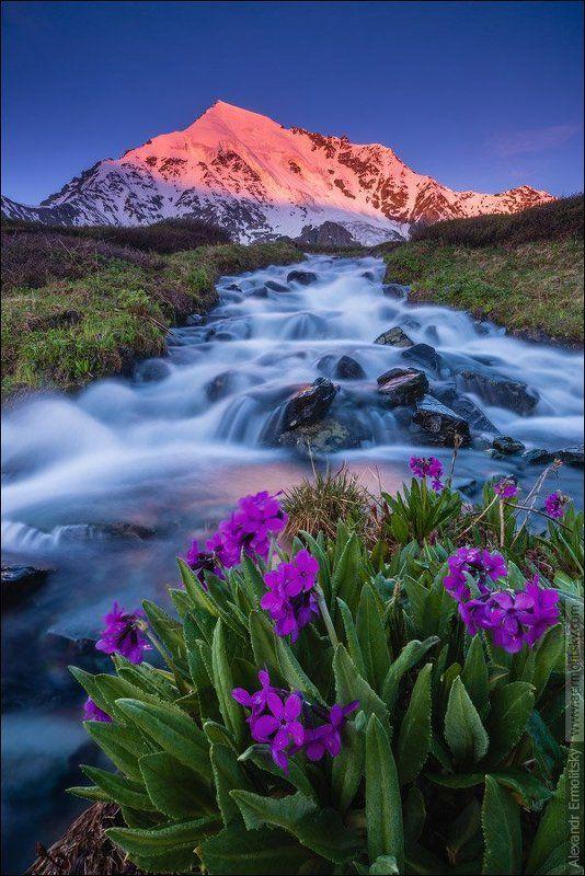 Altai, Алтай ~ Ак-Оюк ~photo preview