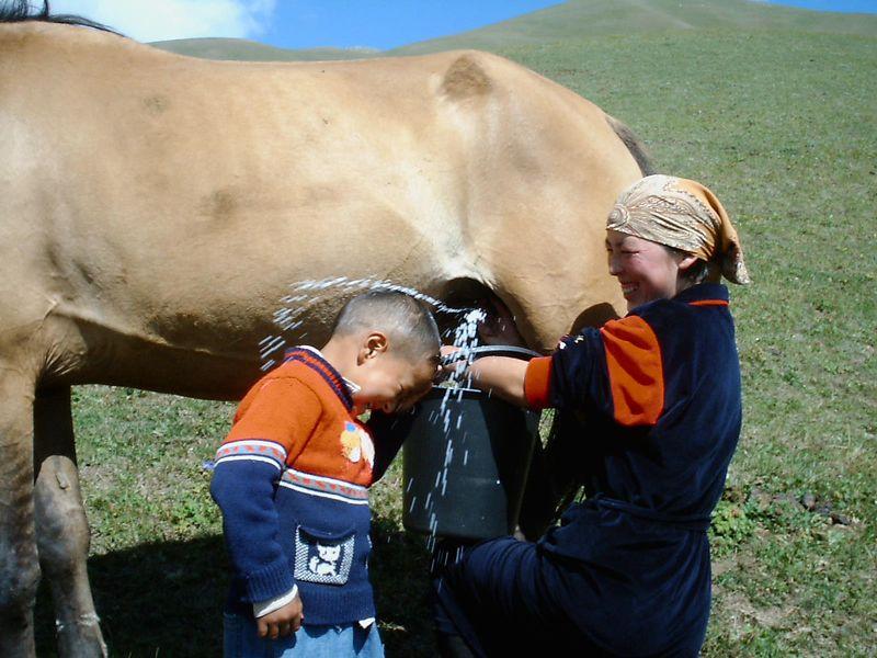 Бердибек, Kyrgyzstan (Kyrgyzstan)
